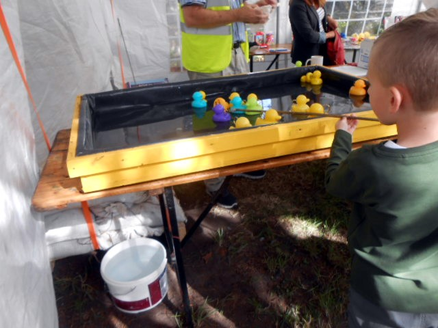 Activities at the Family Fun Day